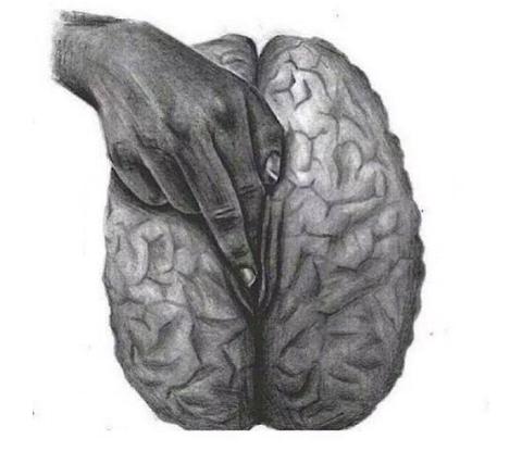 Illustration by Aimée Morales