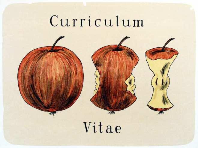 Curriculum Vitae ©Jiri SLIVA, ArtForum / ICZ a.s.